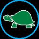 Для водных черепах