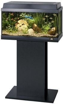 Подставка под аквариум Juwel PRIMO 60/70, REKORD 600/700 и KORALL 60, 61x31x62 см. /черная/ - фото 19652