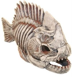 Декорация Декси Скелет рыбы 903, 31х13х17 см. - фото 19993