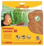 Листья индийского миндаля Sera Catappa Leaves M 18 см.