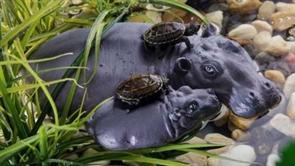 Остров для акватеррариума Exo Terra - семья бегемотов 13x21x4 см.