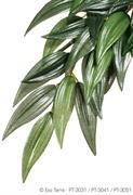 Тропическое растение Exo Terra Jungle Plants пластиковое Рускус среднее 55х25 см.