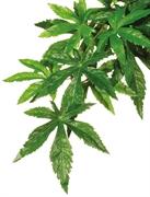 Тропическое растение Exo Terra Jungle Plants пластиковое Абутилон большое 80х20 см.