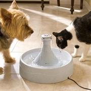 Автоматическая поилка для кошек и собак Petsafe Drinkwell 360 из пластика